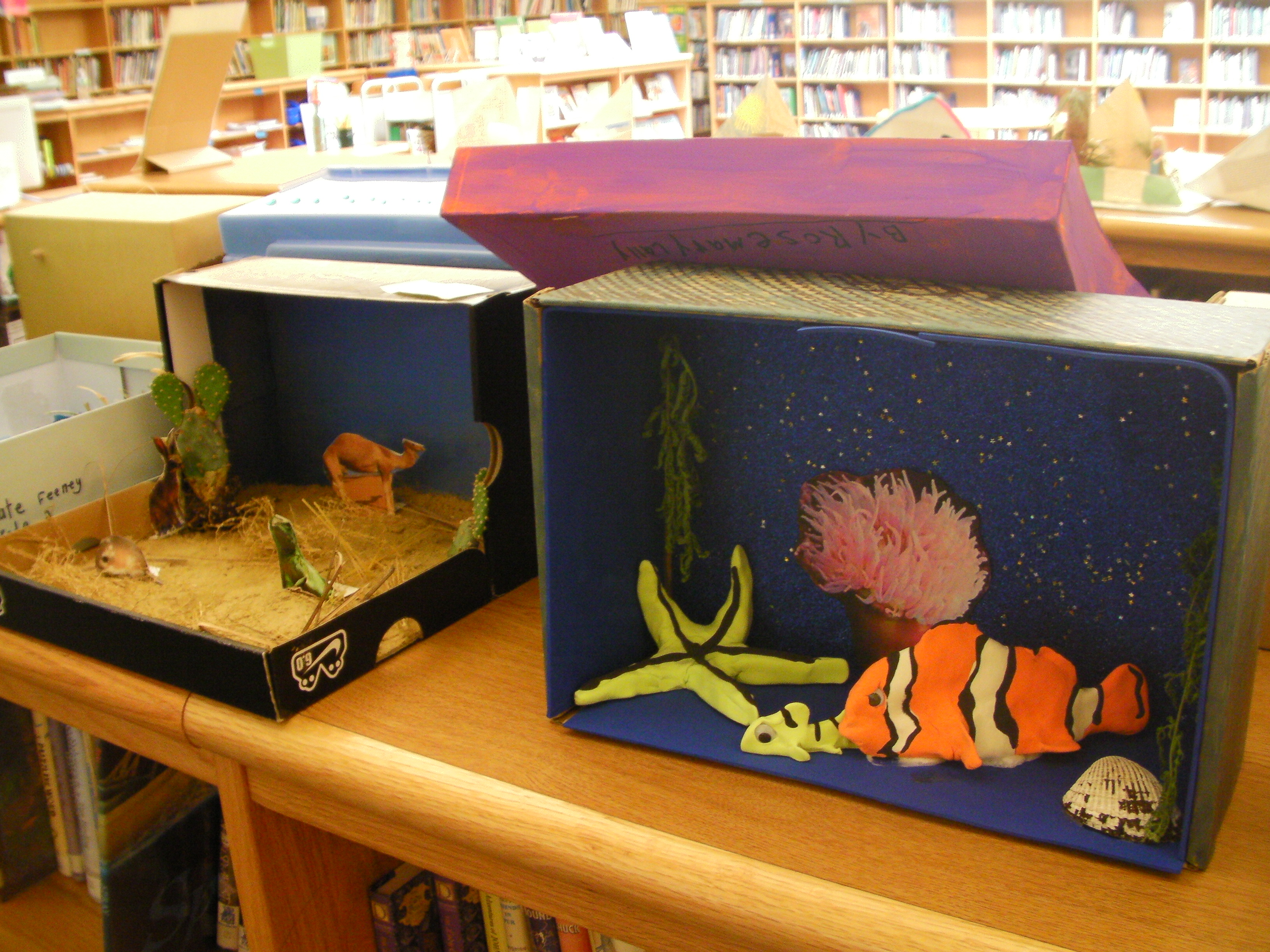 animal habitats projects 2nd grade